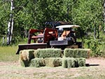 Bundles of hay and farm equipment can be seen here, needed for taking care of horses during the summer.