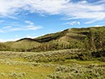 Hills full of sagebrush, aspen trees, and evergreens.
