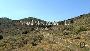 Fossil Mountain Hike